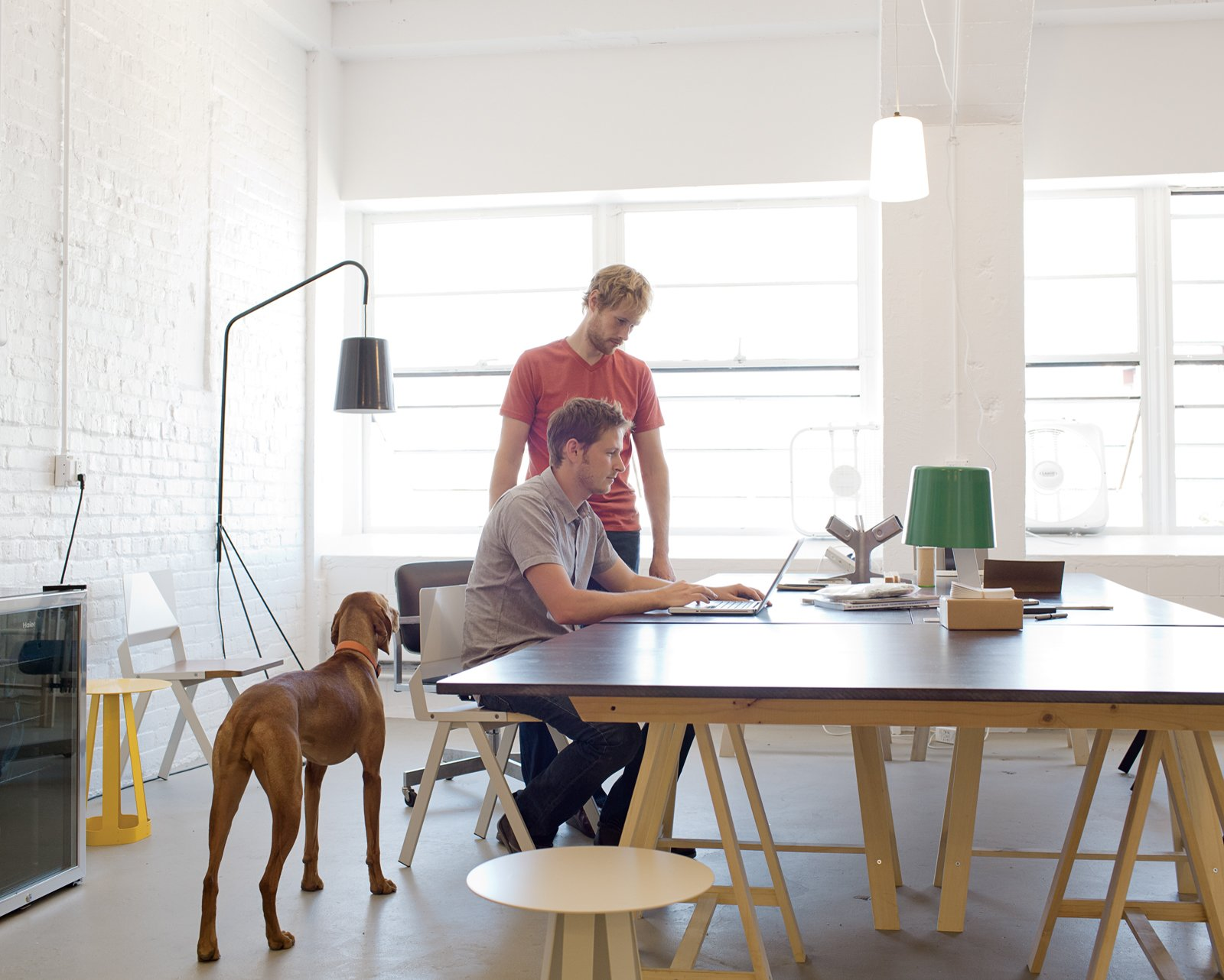 #workspace #office #interior #inside #window #seatingdesign #interiordesign #desk #lighting #flow #chairs #stools #dog #lamp #misewellstudio   Photo by Daniel Shea  Dogs Who Love Modern Design from Furniture