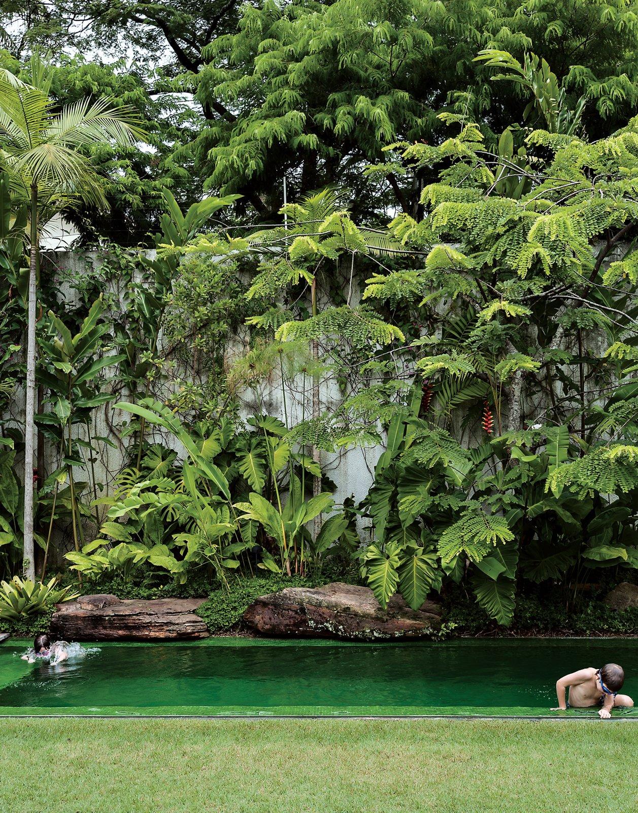 #pooldesign #modern #moderndesign #outdoor #exterior #outside #landscape #backyard #green #lush #garden #retreat #CasaDeck #IsayWeinfeld  Photos from outdoors