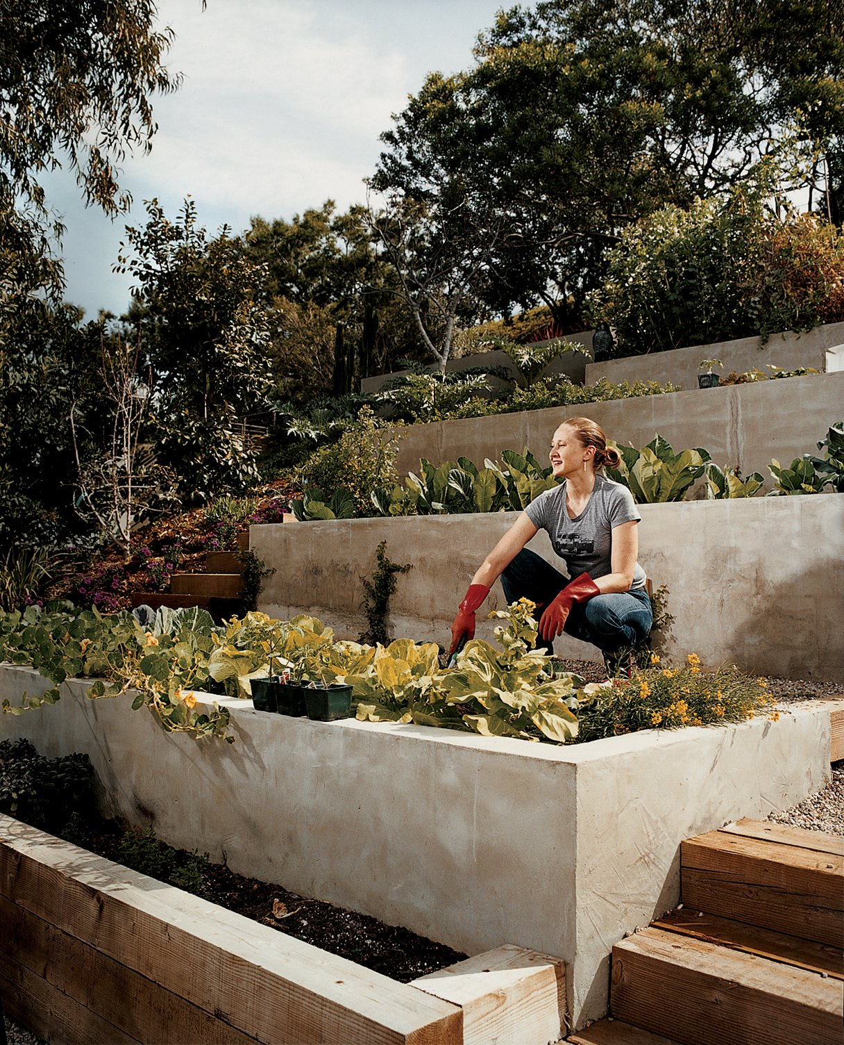 """Outdoor, Back Yard, and Raised Planters Wakeland goes to work on the garden terraces where the couple grows much of their own food.  Search """"where pigs fly"""" from Eric Garcetti's Green Home Remodel"""