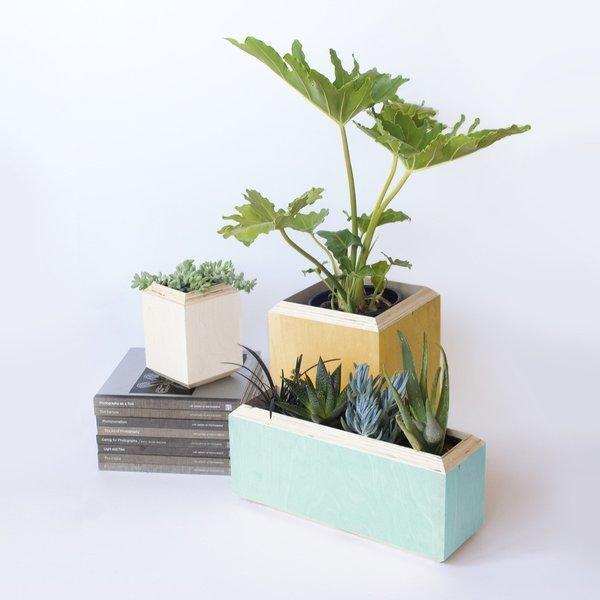 Bring the Outdoors In: 10 Impressive Indoor Planters