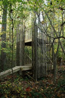 Baltimore Tree House