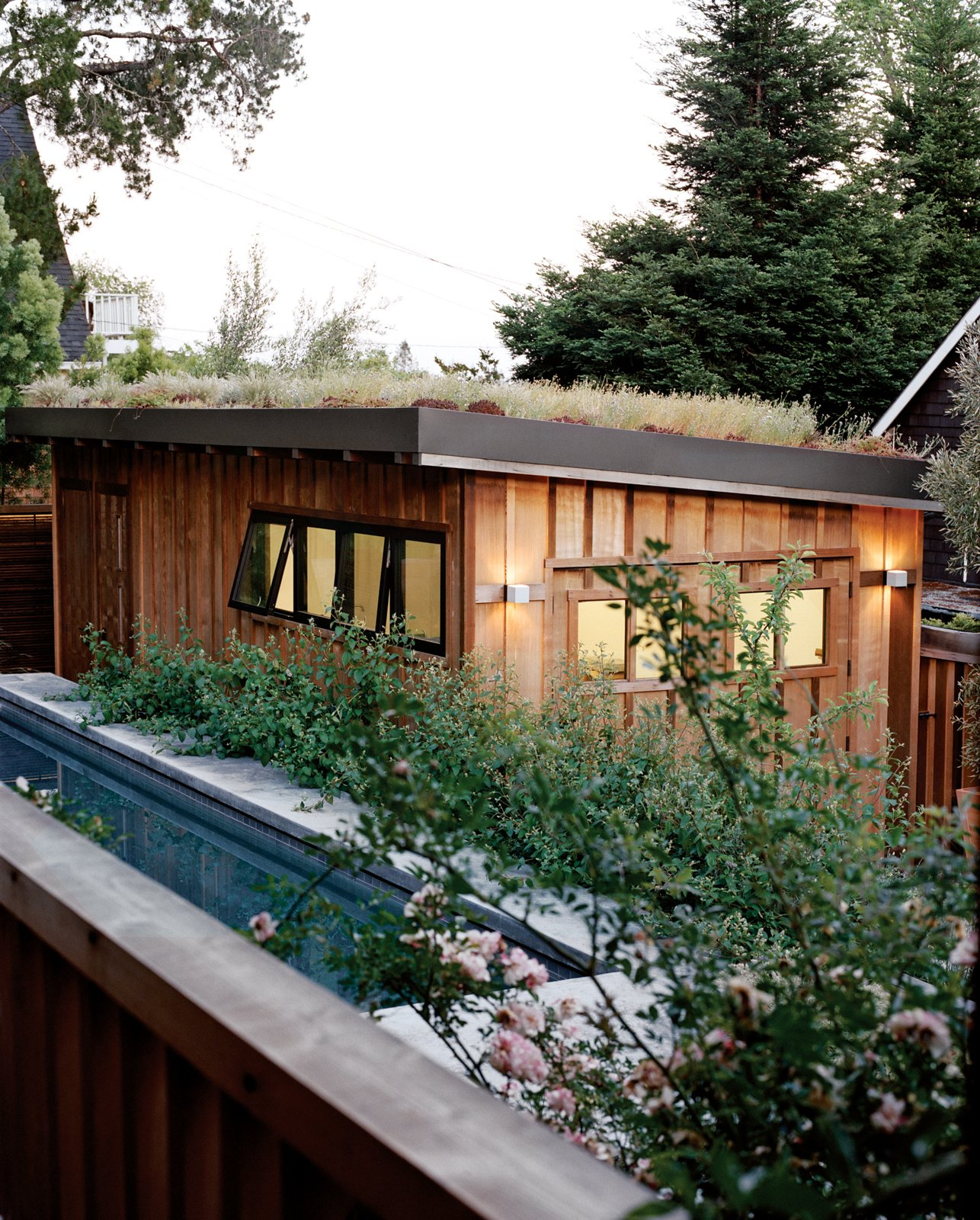 Small, Concrete, Green, Detached Garage, and Outdoor A green roof blooms atop the detached garage.  Best Outdoor Green Photos from Charming Weekend Cottage Renovation in Marin