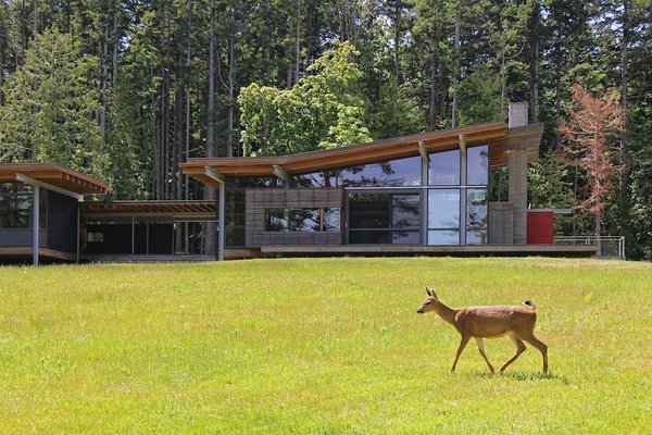An Off-the-Grid Island Home for a Seattle Music Producer