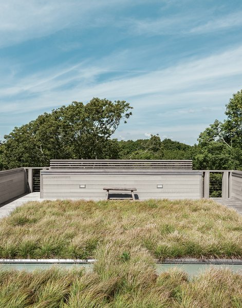 Landscape architects Reed Hilderbrand helped fill out the completed prefab by planting sedge grass on one of the house's two green roofs to reflect the texture of the surrounding meadow. Tagged: Outdoor and Rooftop.  Photo 3 of 11 in An Unconventional Prefab on Fishers Island