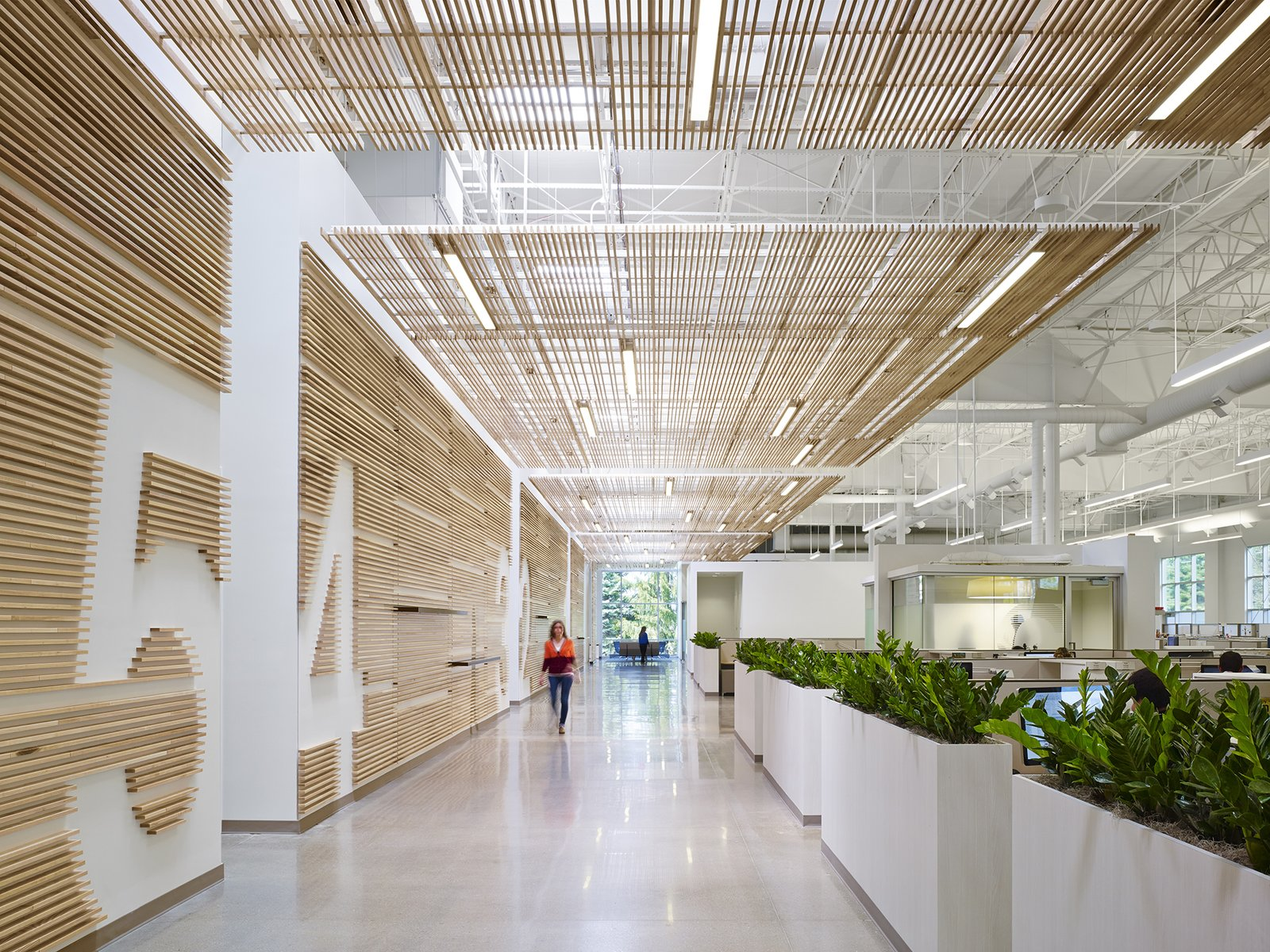 "Hallway The center's other healthy materials include stained concrete floors and low VOC paints on the walls and steel structure. However, when it comes to sticking to the basics, in some cases ""we need to balance that impulse with eco-friendly synthetics,"" says Cardet. For example, ""The solid surfaces are synthetic but carefully engineered to be healthy and can be recycled.""  Photo 8 of 10 in Wood Guide Part II: How to Recognize 5 (More) Common Wood Species from Get a Primer on Healthy Materials in Architecture from this Cutting-Edge Design Center"