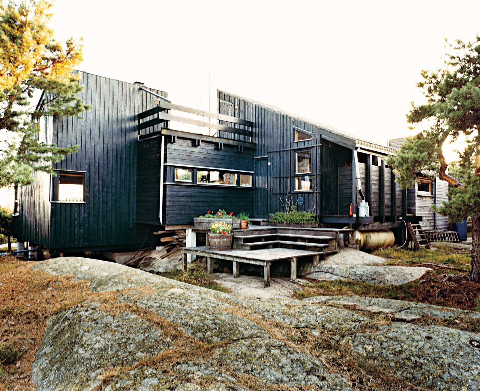 Exterior, Cabin Building Type, Wood Siding Material, and Shed RoofLine Blocked from the wind, a deck at the rear of the house is a favorite place for sunbathing and also shelters planters of herbs.  Photo 8 of 9 in Norwegian Wood