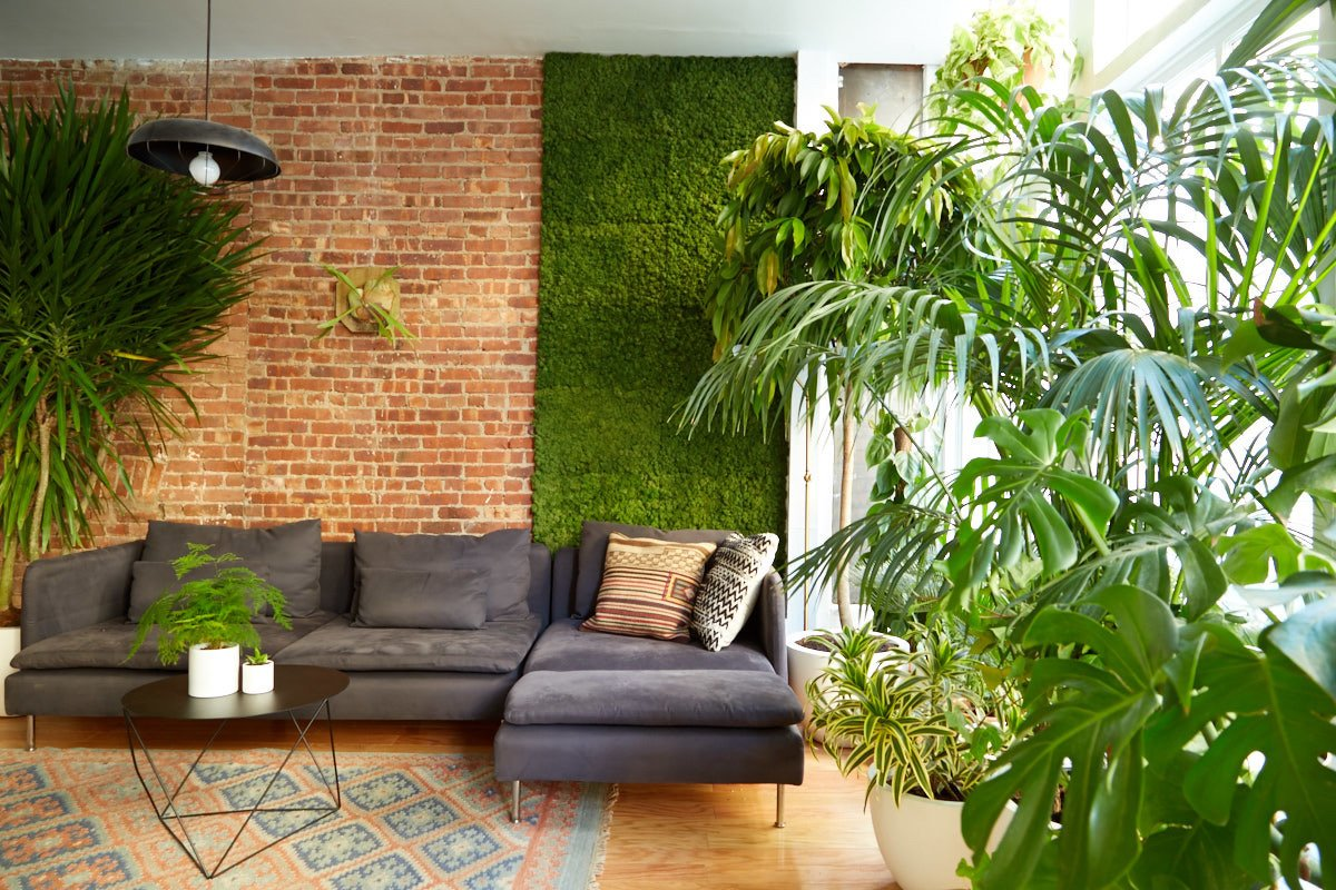 By working with more plants than the typical office, The Sill created a space with Breather that stands out as a distinct experience while promoting wellness in the workspace. If you want to enjoy the first partnership between Breather and The Sill, you can reserve the space today.  Office from No Need to Gossip Around the Water Cooler Here