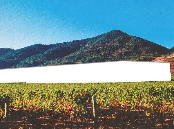 Dominus Winery, Herzog And de Meuron, 1998.