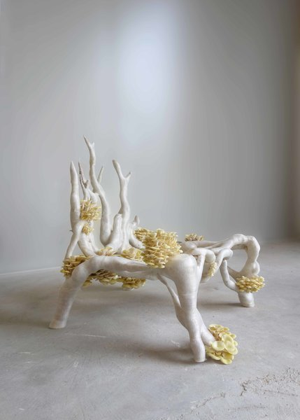 Eric Klarenbeek's chair, the Mycelium Project, has a 3D-printed skin of recycled organic material that is filled with a lightweight fungus that provides structural strength. Working from Amsterdam with the University of Wageningen, Klarenbeek used a mixture of water, powdered straw, and mycelium fungus fibers to print a hollow chair that has a bio-plastic skin. As the interior dries, the living mycelium fungus grows within. Combined with 3D printing, it can be made into anything, according to Klarenbeek, from compostable walls for a house to entire cities.
