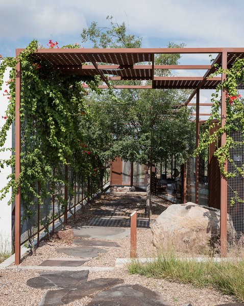 Outside, a gridded trellis with sheet-punched panels overlays the structure and extends into the landscape, providing shade in the warm desert climate.