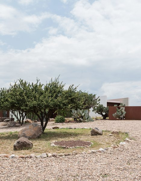 """Crushed stone paths and native plantings, including cacti, wildflowers, and grasses, encompass the surrounding landscape. """"We're nothing but natural,"""" says Austin. """"The cacti, to me, are like pieces of sculpture, each with their own personality. I even named some."""""""