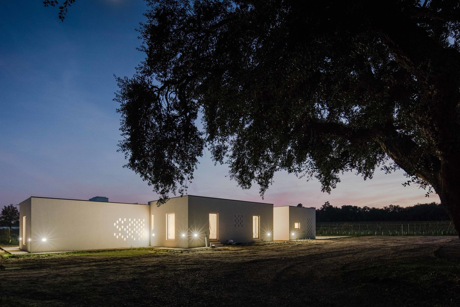 Exterior, House Building Type, and Flat RoofLine On an agricultural estate in Portugal, blaanc studio designed a simple retreat that does its utmost not to interfer with the scenic backdrop.  This Vineyard Hideout Is One with the Land, Literally by Dwell