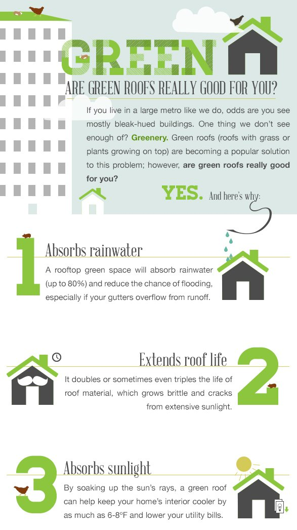 Why go with a green roof? This infographic calculates costs versus benefit and gives tips (hint: chickens) on how to maintain grassy perfection.  Photo 3 of 7 in Plant a Green Roof: Feed 70 Chickens and Lower Your Bills