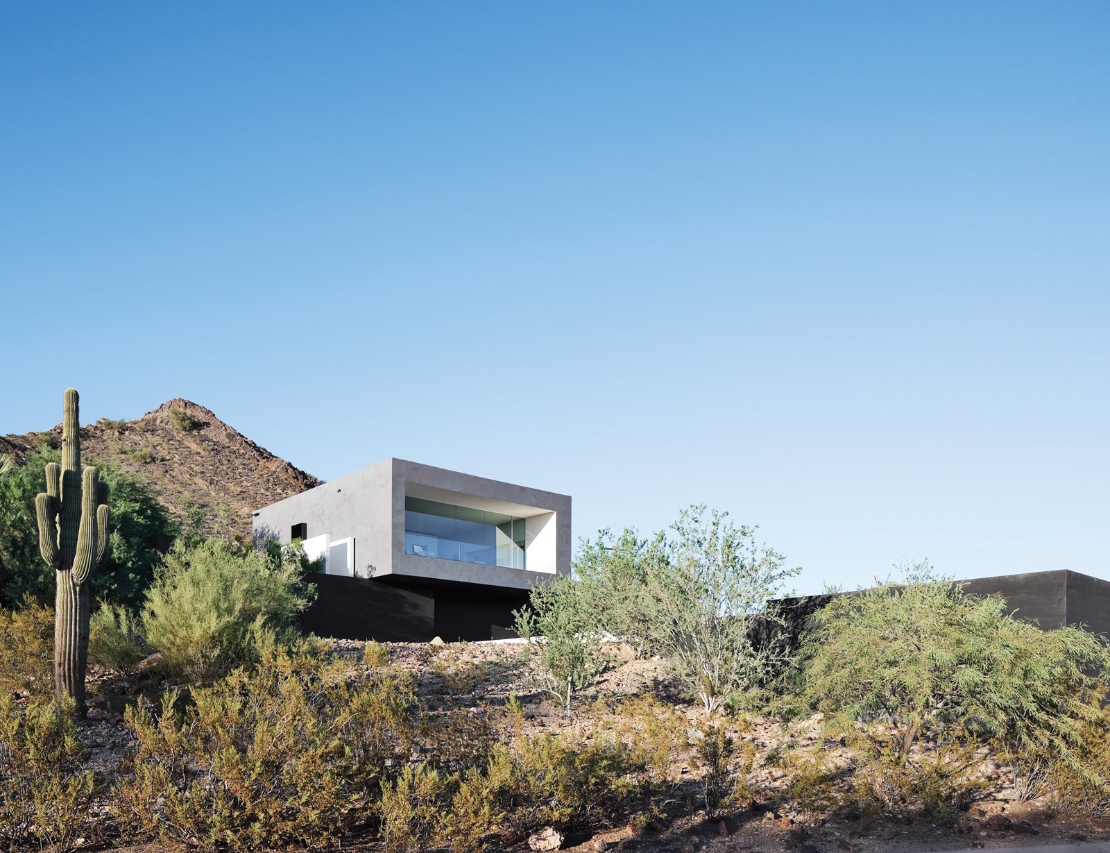 Outdoor, Desert, and Shrubs A lone saguaro marks the southwest corner of Thomas and Laura Hyland's property, which is situated adjacent to the Phoenix Mountain Preserve. The structure's main living volume is elevated and faced in glass, overlooking a descending pathway that leads to a pool tucked into the site.  Photo 2 of 8 in This House Doesn't Hold Back and Embraces the Desert