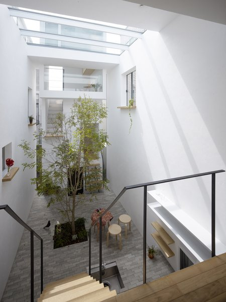 To achieve a level of comfort on a plot wedged between virtually identical prefab houses, the architects brought in a sense of the outdoors with this courtyard that's finished with a grey brick floor and a live Evergreen Ash tree.  Unique Tokyo-Based Architects by Kate Santos