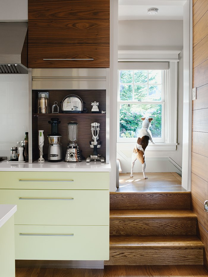 Kitchen, Colorful Cabinet, and Medium Hardwood Floor Dan Pacek and John Roynon of Leonia, New Jersey, expanded and renovated their tiny kitchen, integrating it more sensibly into their 1911 house while borrowing natural light from secondary sources, such as a window on the landing leading to the second floor.  Kitchen from Cramped Kitchen Transformed Into an Inviting Hub
