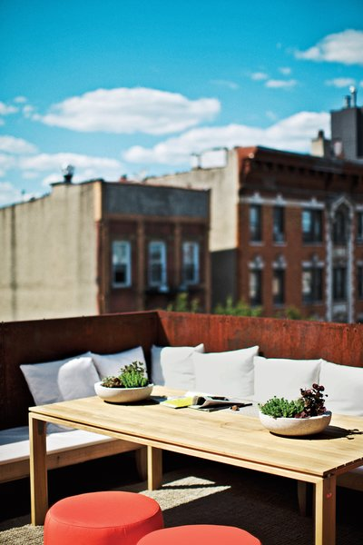 The couple worked with landscape firm Staghorn Design Studio for the plantings on their rooftop terrace, where an Elan dining table from Design Within Reach.  Photo 9 of 14 in A Brooklyn Couple Rehabilitate a 19th-Century Duplex