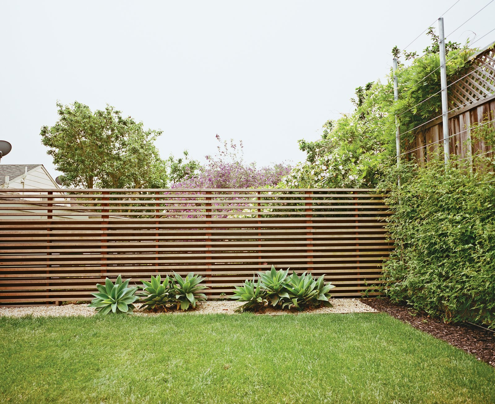 """Outdoor, Horizontal Fences, Wall, and Grass The once-sloping space now has climbing vines, a slatted fence, and foxtail agaves.  Search """"fences,-walls--metal"""" from A Two-Part Landscaping Renovation in San Francisco"""