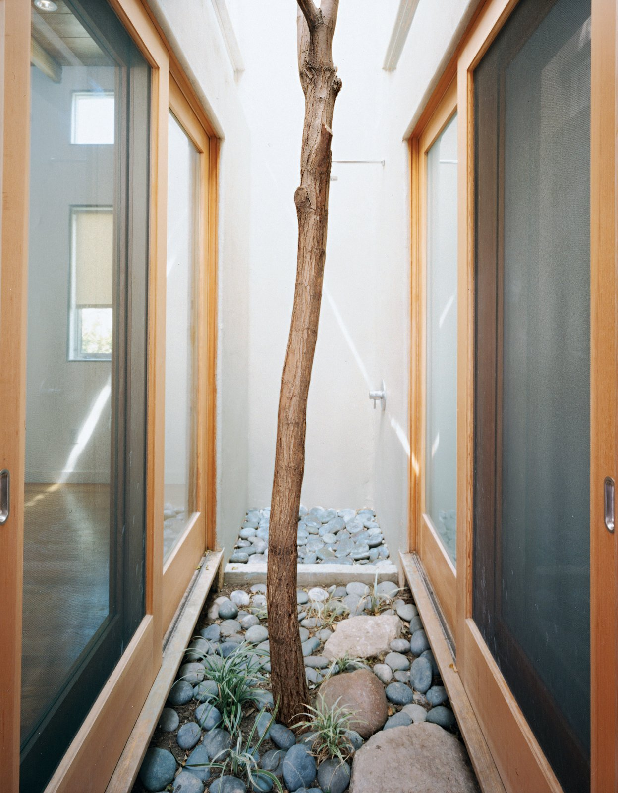 A Robinia tree moved from another part of the site grows in this pocket courtyard and thermal chimney in the heart of the house.  Space-Saving Sliding Doors by Erika Heet from Casa Study House #1