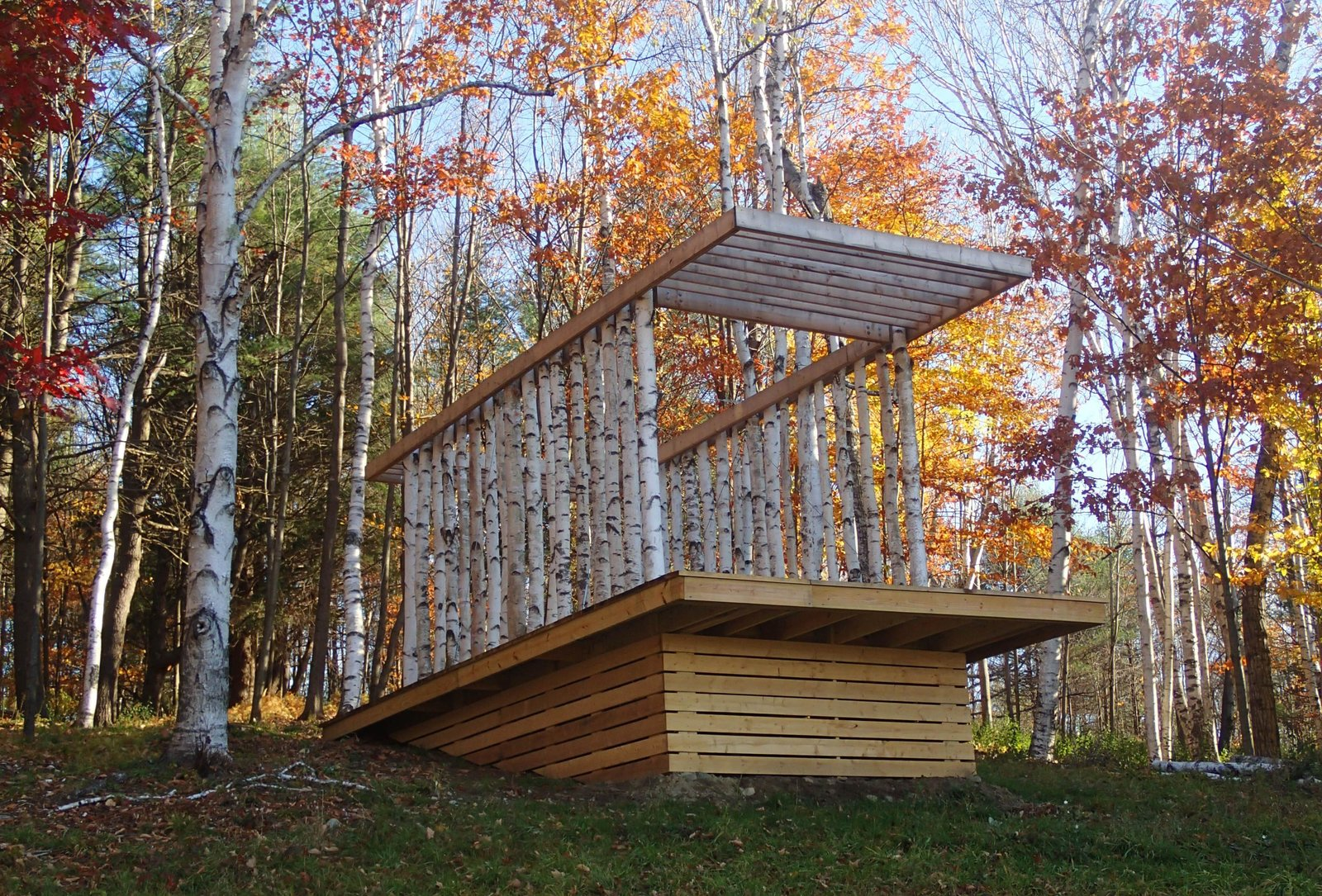 Outdoor, Side Yard, Woodland, Small Patio, Porch, Deck, Trees, Decking Patio, Porch, Deck, Vertical Fences, Wall, Grass, and Wood Fences, Wall The Birch Pavilion sits atop a 14-by-26-foot platform composed of hemlock and pressure-treated timbers. Photo courtesy of Moskow Linn Architects.  Photo 1 of 10 in Wood Guide Part II: How to Recognize 5 (More) Common Wood Species from Aspiring Architects Build a Pavilion in the Vermont Forest