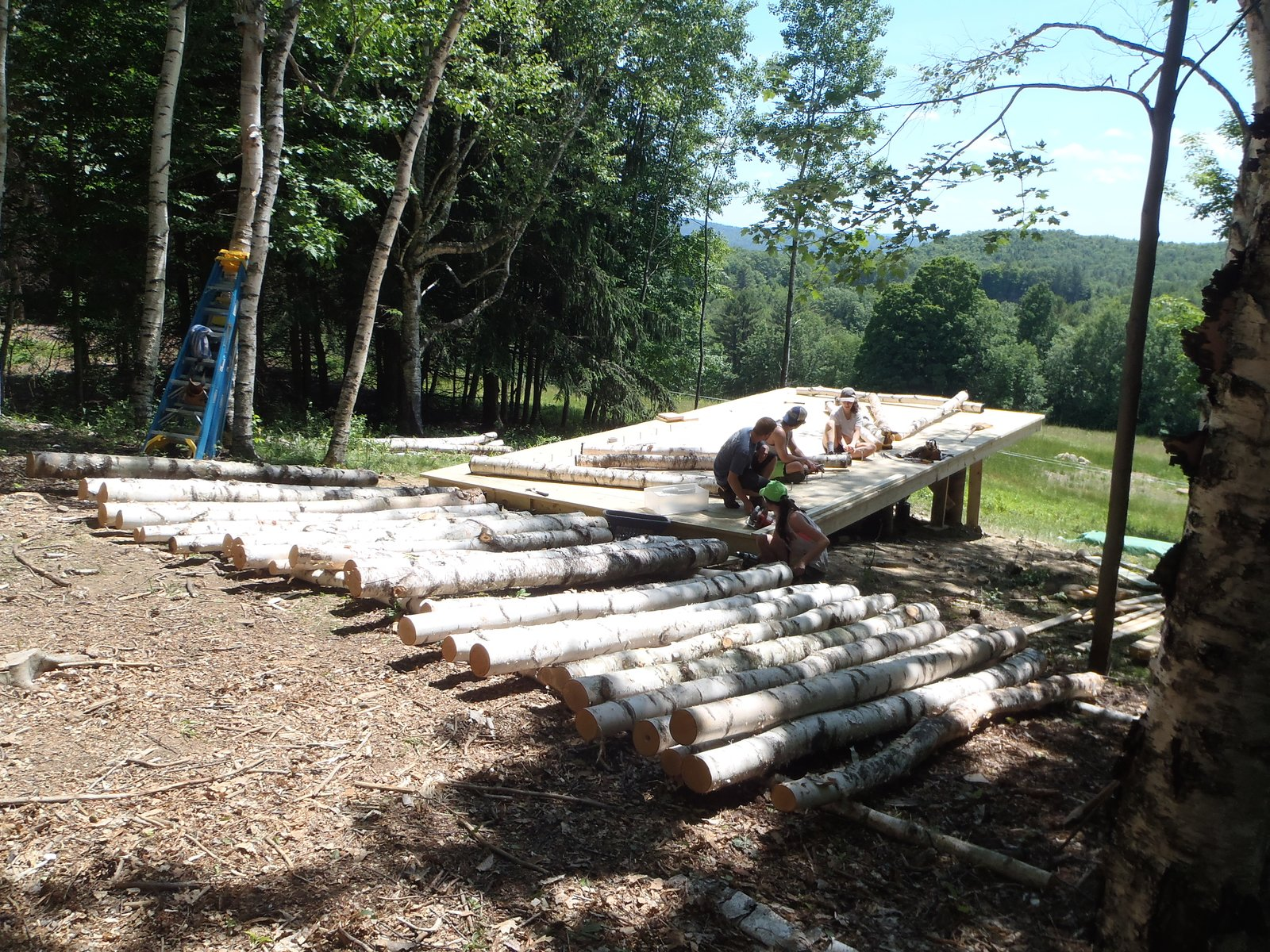 The Birch Pavilion under construction. Photo courtesy of Moskow Linn Architects.  Photo 4 of 7 in Aspiring Architects Build a Pavilion in the Vermont Forest