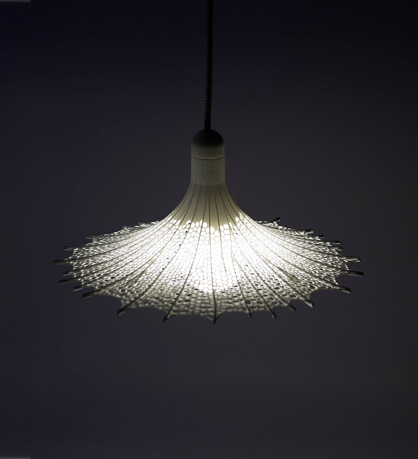 Lanzavecchia + Wai, whom we featured in our May 2013 issue, created the Biophilia lampshade, an industrial product designed as a living organism.  3D Printed Lighting by Exnovo by Diana Budds
