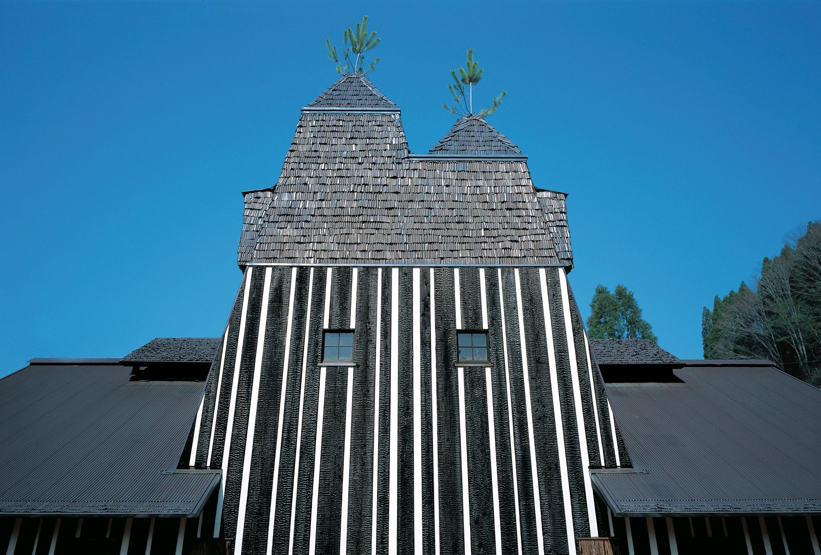Architecture and nature combine in many of Fujimori's projects: the Lamune Hot Spring House appears to be built around two pine trees, with their spires poking out from the roof.  Photo 2 of 23 in Terunobu Fujimori