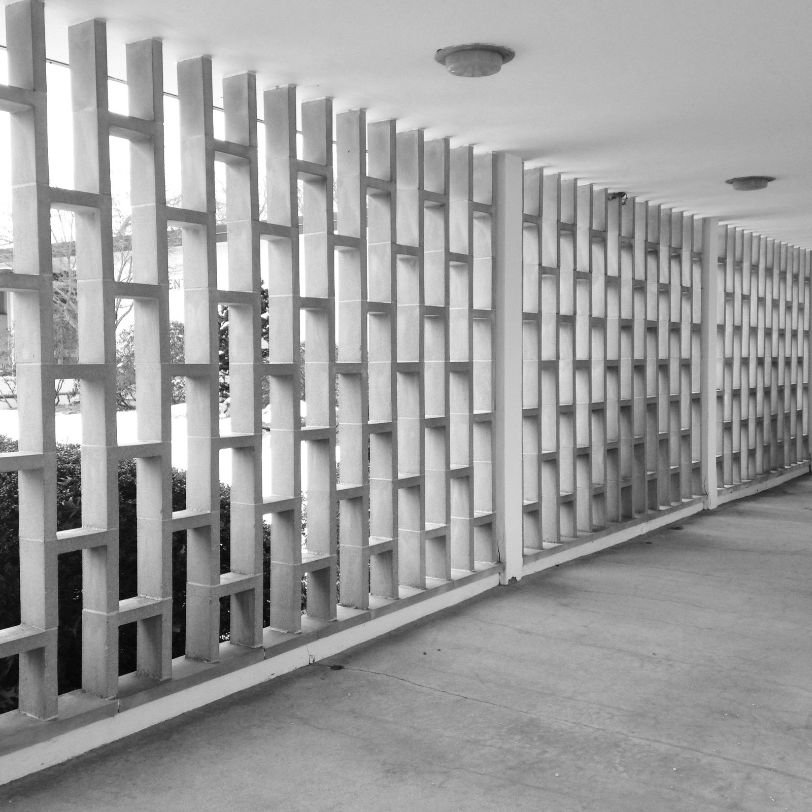 A precast screen that suggests Hawaii more than Massachusetts. Photo by Alexandra Lange.  Photo 4 of 14 in Architecture Tour: Brandeis Modern