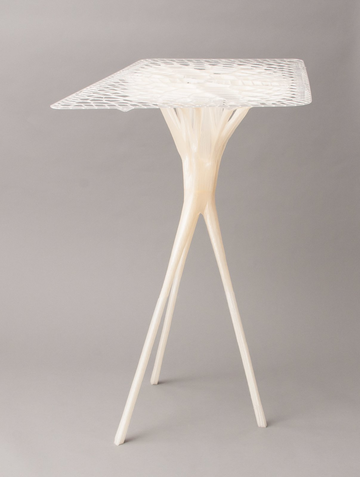 Another table designed by Lukas Oehmigen with the BigRep Printer, which was shown as part of the Designing with Nature show at the Architecture Foundation London.  Photo 4 of 6 in Want the Perfect Chair? Print It
