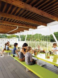 Austin's Casis Elementary School Teaching Garden