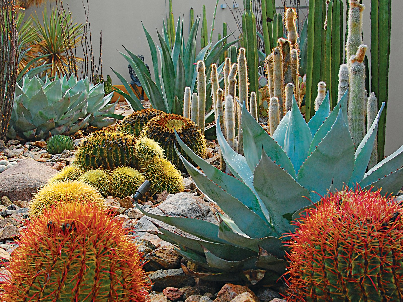 "Southwest: Steve Martino  The red yucca, brittlebush, and prickly pear at a Palm Springs, California, home also relate to the southwestern climate. ""Native plants let your garden tap into the food chain—it becomes a habitat while connecting you to the history of a place.""  Photo 2 of 12 in Landscape Design for All Climates"
