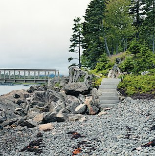 Northeast: Stephen Stimson Associates  To recreate the original ecosystems on a plot of land in Northeast Harbor, Maine, that required extensive site rehabilitation, landscape architect Lauren Stimson and her team examined early photographs and paintings depicting scenes more varied than the existing evergreen forest. They designed granite stairs leading into a seaside area featuring huckleberry, sweet fern, bayberry, and sheep laurel, as well as white spruce trees.