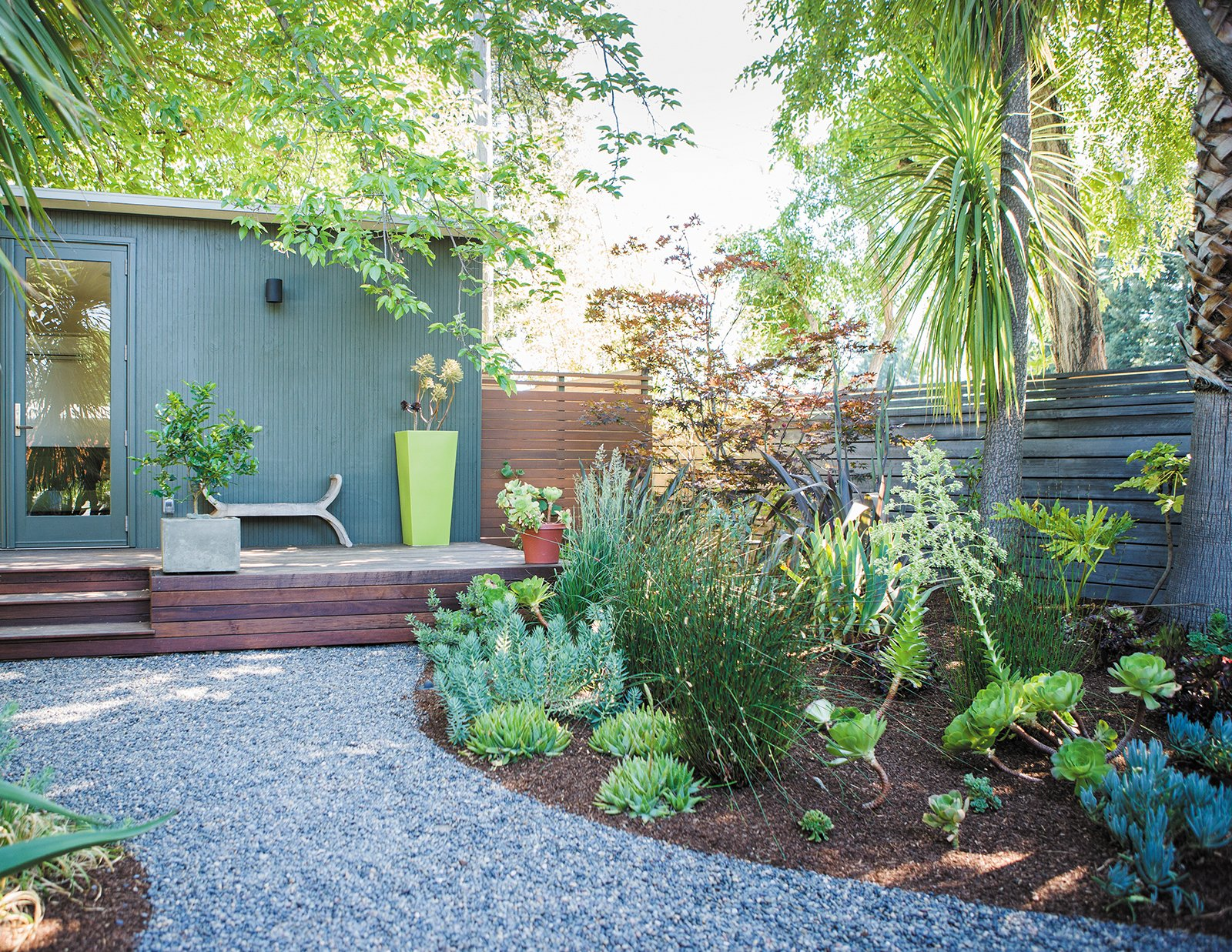 Outdoor and Gardens A gravel path leads to a guesthouse, where Trainor supplemented an existing garden of yuccas and palm trees with succulent aeoniums and flowering euphorbias.  Photo 5 of 9 in Creative Landscape Design for a Renovated Eichler in California