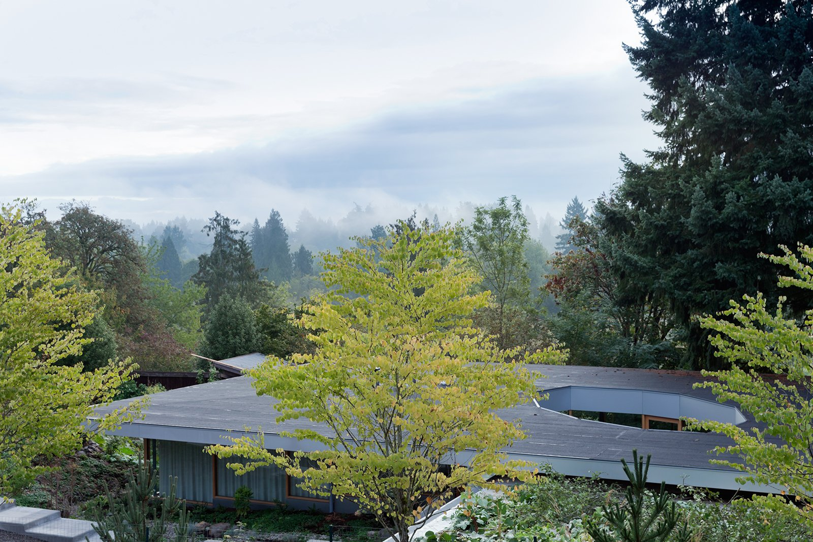"""Because you have this incredible proximity and connection to the outside, you have a higher aesthetic awareness.""—Andrew Heid, architect  Homes Framed by Trees by Diana Budds from This House Gets Better with Age"