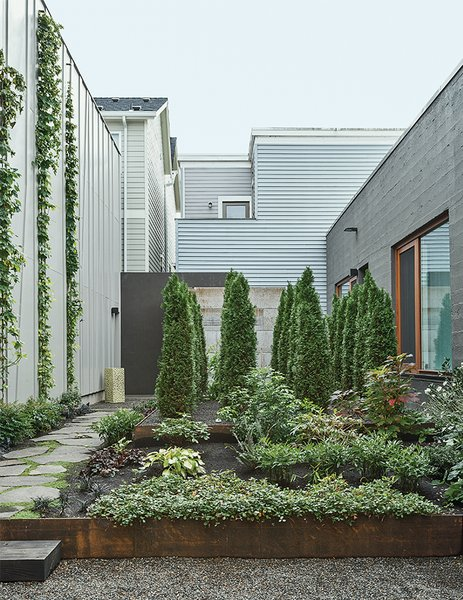 "Hutchins and Montague worked with Samuel H. Williamson Associates Landscape Architecture on the garden, which is planted with sword ferns, vine maple, and wild ginger. ""When we look at it from the bedroom, it's our private little forest,"" Montague says."