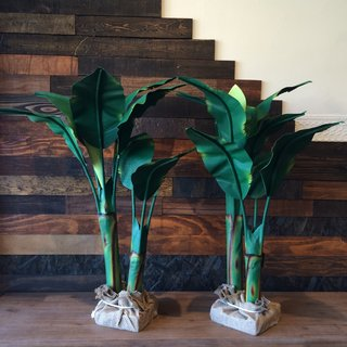 """Canvas Banana Tree  A new summer addition (and perhaps another example of there always being money in the banana stand),  these eccentric, three-foot-tall pieces are great accents, and as Ponce de Leon says, """"you don't have to kill anything."""""""