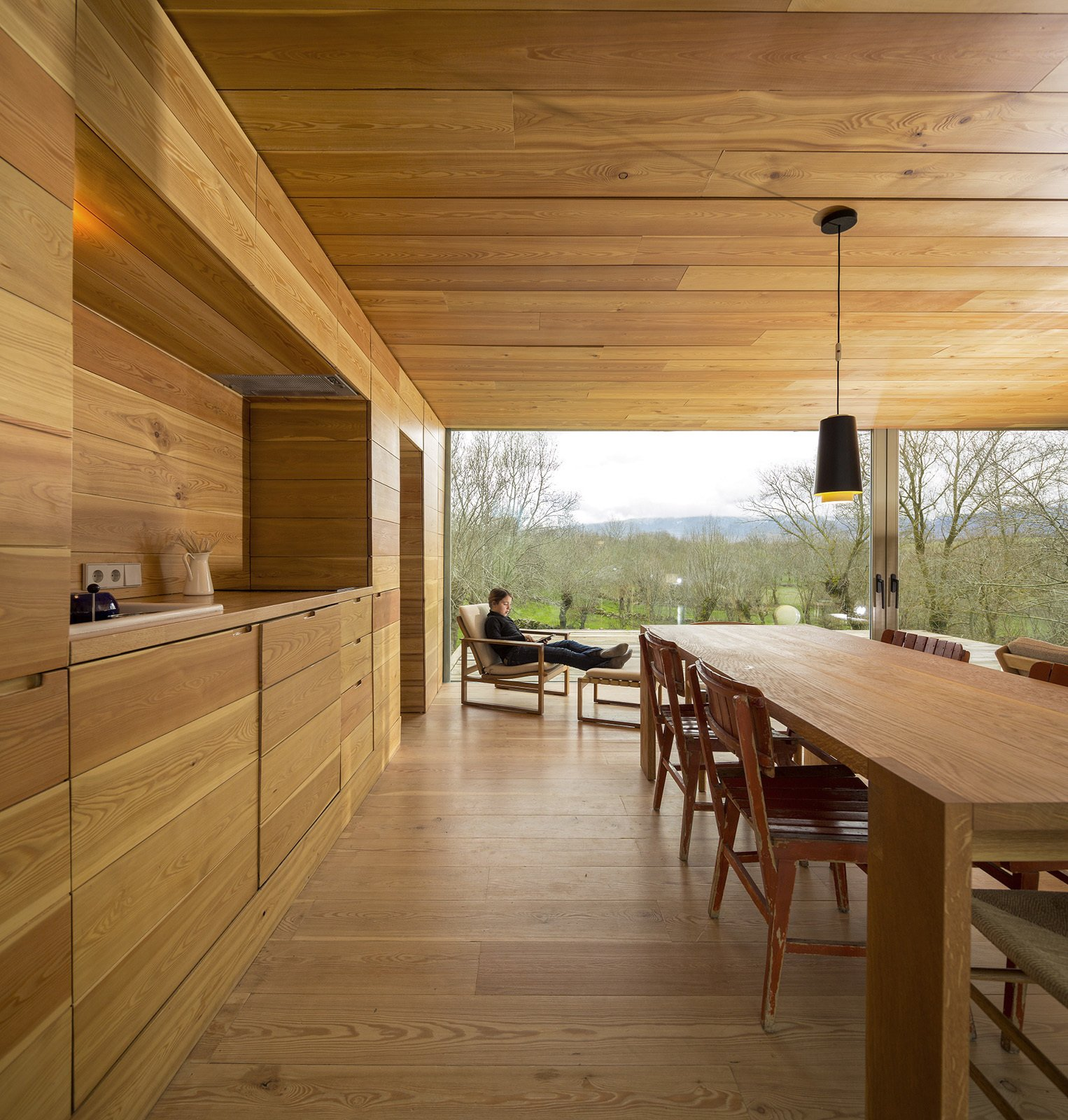 How To Recognize Different Wood Species: The 10 Most