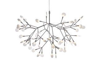 """Heracleum LED chandelier by Moooi  """"One of the reasons I chose that was because it's beautiful. The form itself conducts the electricity. The thing about that light at this moment is, everybody loves the hell out of it. I don't even have to put any words to it really, everyone who walks in the door thinks it's beautiful. Even though it's nearly $4,000, I sell more of that than any single light in the store. I'm not choosing that piece, per se, but the people have spoken."""""""