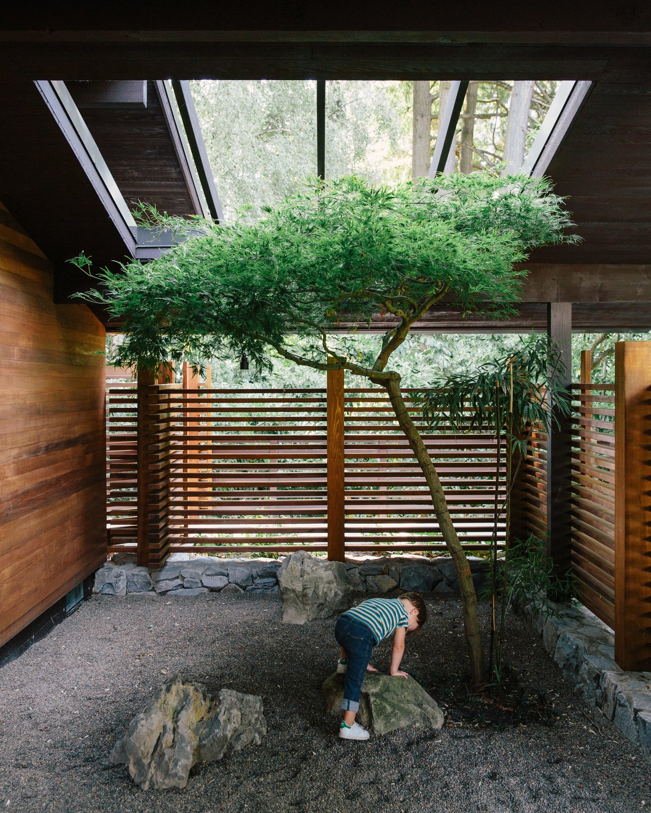 Outdoor Aaron and Yuka Ruell transformed a Portland ranch house into a retro-inspired family home with plenty of spaces—like the trellised porch—for their four children to roam.  Photo 3 of 12 in 5 Reasons Why Landscaping and Bringing Plants Into Your Home Is So Valuable from Wood Paneling Loses its Dated Reputation With This Renovation of a 1959 Portland Gem