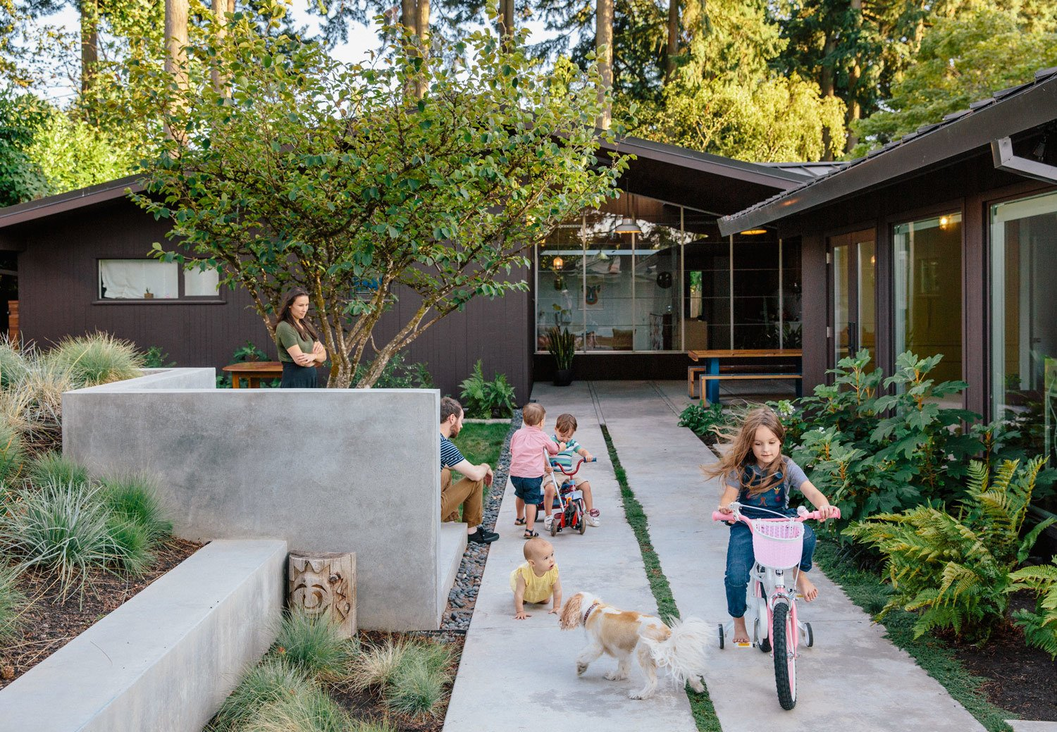 Outdoor, Trees, Concrete Patio, Porch, Deck, Shrubs, Back Yard, and Walkways In their concrete-walled courtyard, Yuka and Aaron watch as twins Emerson and Jasper, daughters Maude and Mirene, and Alfie the dog play. The house is painted in Black Bean Soup by Benjamin Moore, a color in keeping with the period of the original architecture  Photo 7 of 11 in Wood Paneling Loses its Dated Reputation with This Renovation of a 1959 Portland Gem