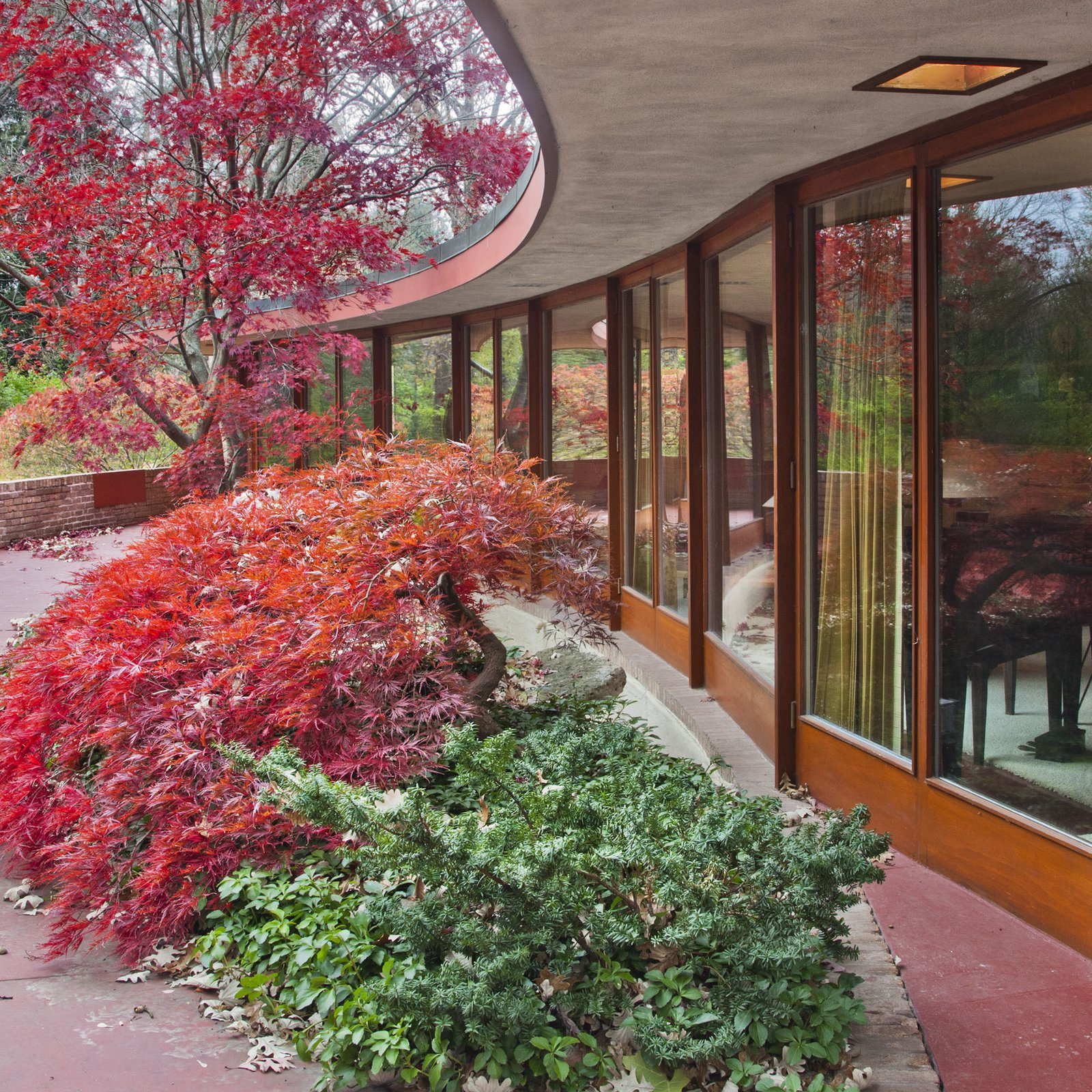 Outdoor, Concrete Patio, Porch, Deck, Trees, Shrubs, and Side Yard The house is one of about 60 so-called Usonian houses that Wright designed for middle-income clients starting in 1936. Image courtesy of Wright Auction House.  Photo 5 of 11 in Dwell Reflects on Frank Lloyd Wright in Honor of the 150th Anniversary of His Birth from Accessible Frank Lloyd Wright House in Illinois Is Reborn as a Museum
