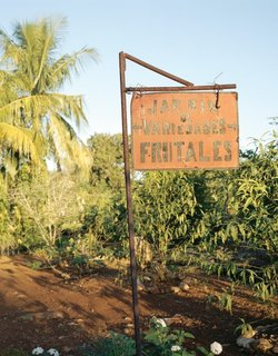 Farming Cuba: Organipónico 5  Signage at an urban farm in Havana.  Photo provided by Carey Clouse