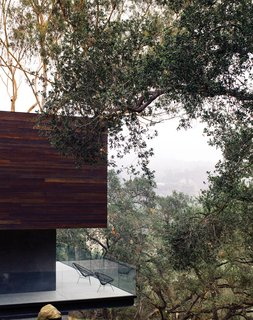 """Just as the barn was extended and cantilevered over the sloped site, so too was the deck off the kitchen, which juts out toward the oak grove. """"There are 125 coast live oaks on the property,"""" says Walker. """"They're beautiful trees, so why not exploit that?"""" See more ways to use oak in your home."""