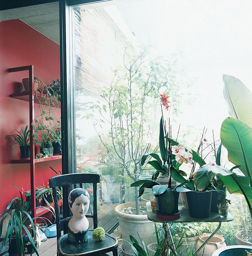 The sun room features an exotic assemblage of tropical plants and ojbets de arte.  Lush Life from Garden Apartment