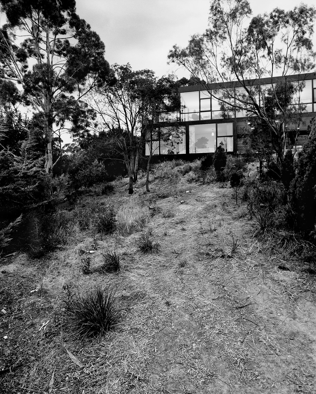 The rear facade is walled in glass and faces the sloping hillside.  Photo 1 of 12 in Kingston Brio