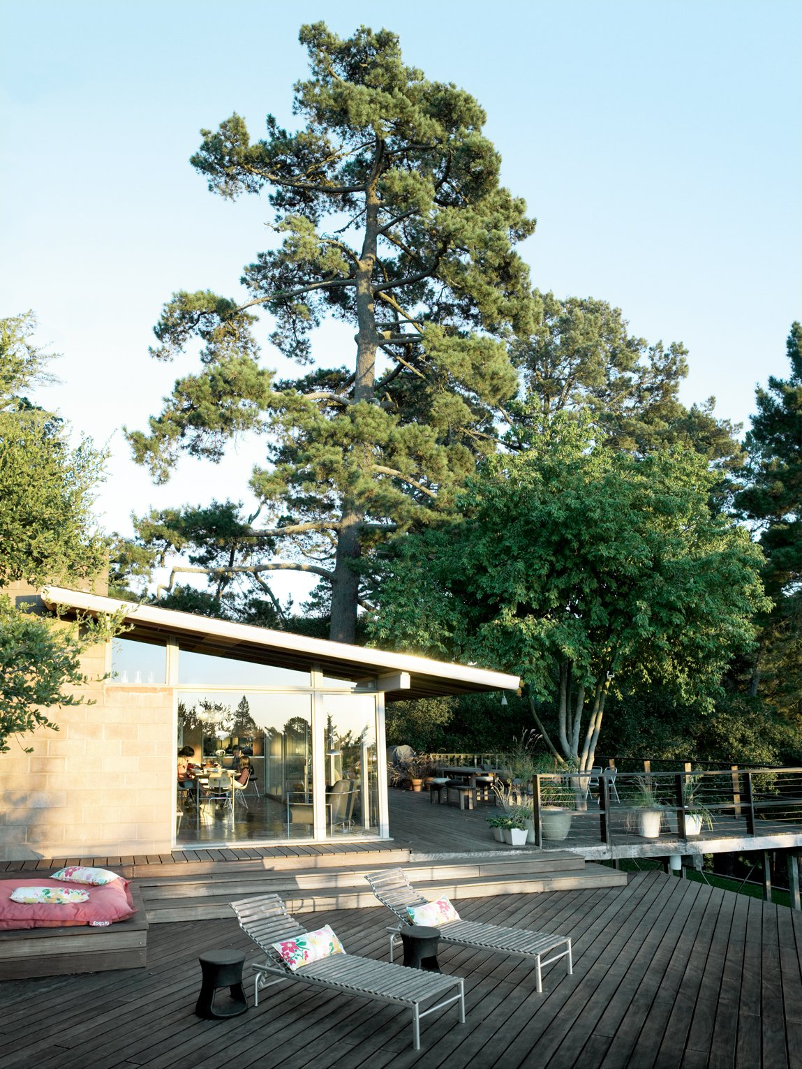 Exterior, House Building Type, and Mid-Century Building Type The large deck was falling apart when the Pfeiffers moved in, necessitating a serious overhaul of the lower level.  Photo 8 of 9 in Oakland Aesthetics