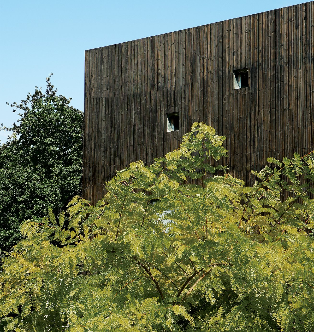 Exterior, Wood Siding Material, Flat RoofLine, and House Building Type The house's stained-cedar cladding makes a stark but pleasing contrast to the natural foliage of the site.  Photo 2 of 13 in All Clad
