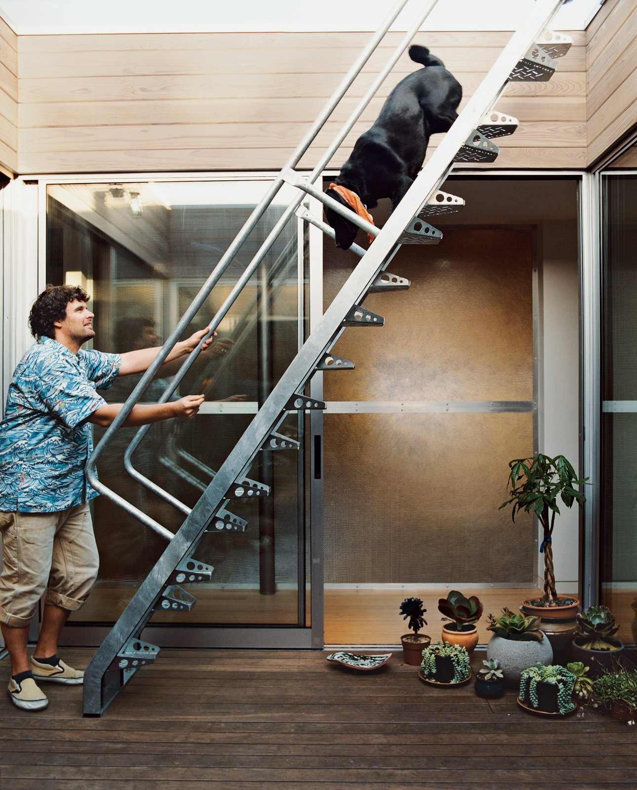 Tad Beck greets his lab mix, Little Bear, at the bottom of an alternating tread stairway that makes getting to and from the roof deck easy on two or four feet.  190+ Best Modern Staircase Ideas from Light Box