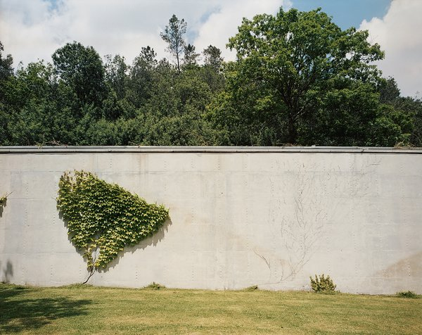Despite being meticulously maintained, bits of unruly vegetation find their way onto the house's pristine concrete walls.