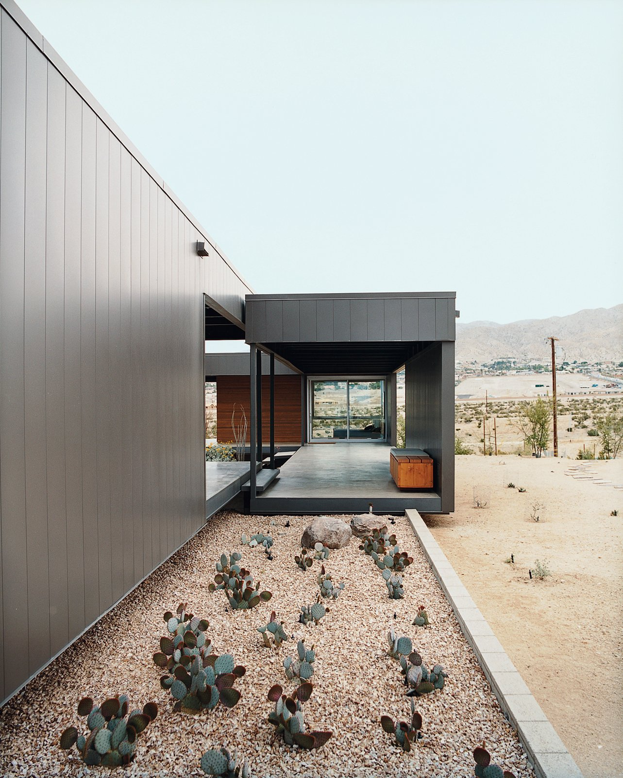 Outdoor, Hardscapes, and Desert Ocotillo was placed in key areas as a great structural focal point.  Photo 5 of 9 in Desert Utopia